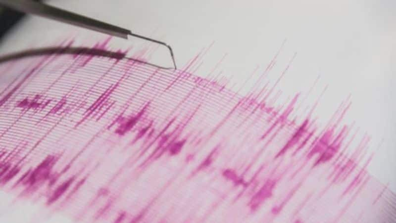 Tremors Felt in Parts of Delhi after Earthquake of 5.3 Magnitude Strikes Nepal