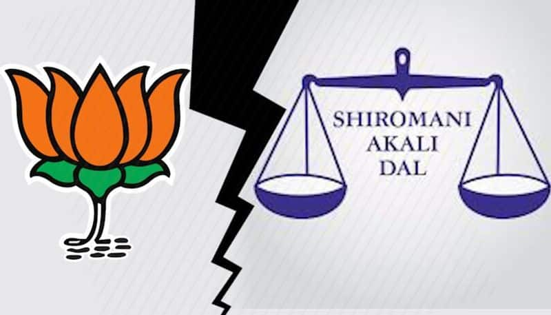 BJP says relationship with Shiromani Akali Dal remains unaffected despite differences