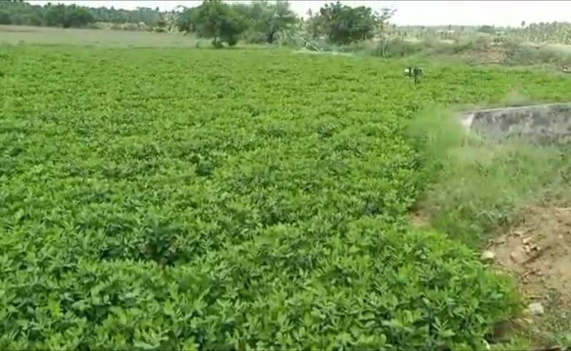 new technology introduced for farmers