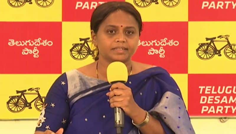 TDP Leader Panchumarti Anuradha Satires on ycp ministers