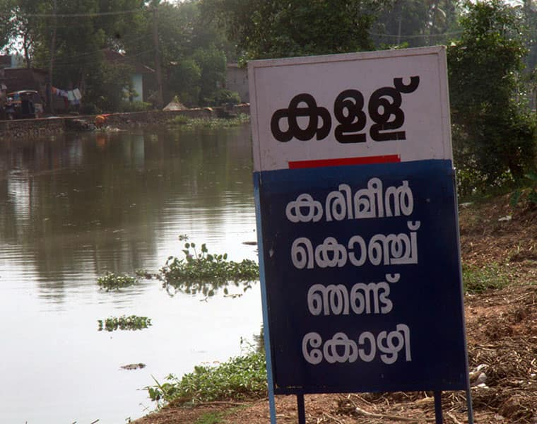 Toddy shop in alappuzha will work from may 20 on wards