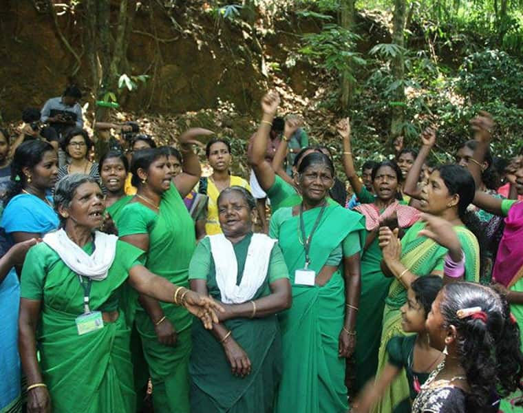 Govt move for Athirappilly stirs hornets nest once again