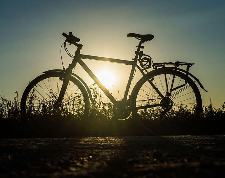 bicycle days nostalgia memory by Rafees Maranchery