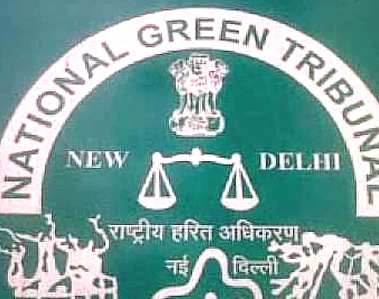 Uttar Pradesh: NGT seeks report on illegal commercial establishments from state chief secretary