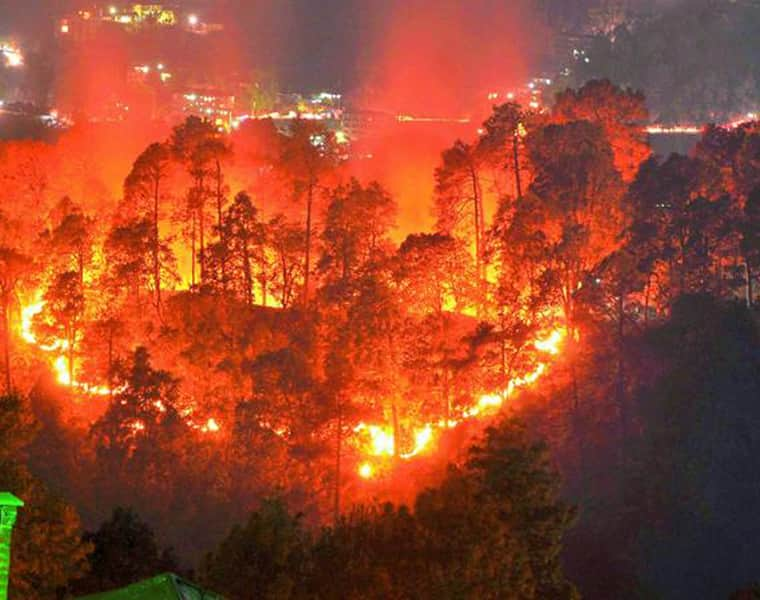 Brazil's Amazon rainforest burns at record rate; Sau Paolo experiences dark afternoon