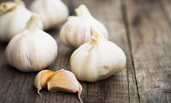 Taking garlic on empty stomach daily dose and get rid of effective benefits