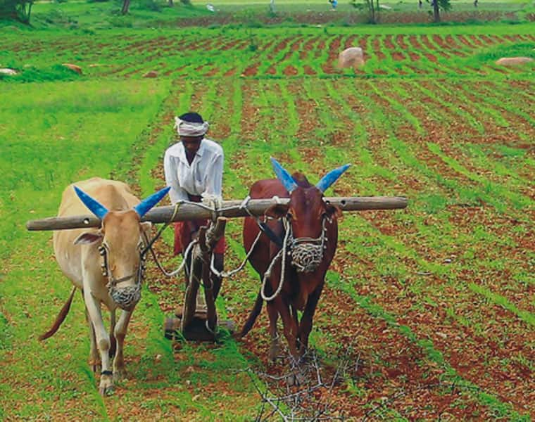 Payments to farmers: Government says Aadhaar not compulsory for first installment