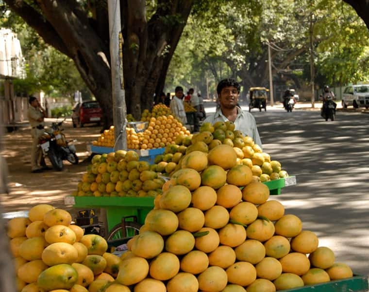 Maharashtra Alphonso mango growers bypass APMC, choose to sell produce directly to buyers