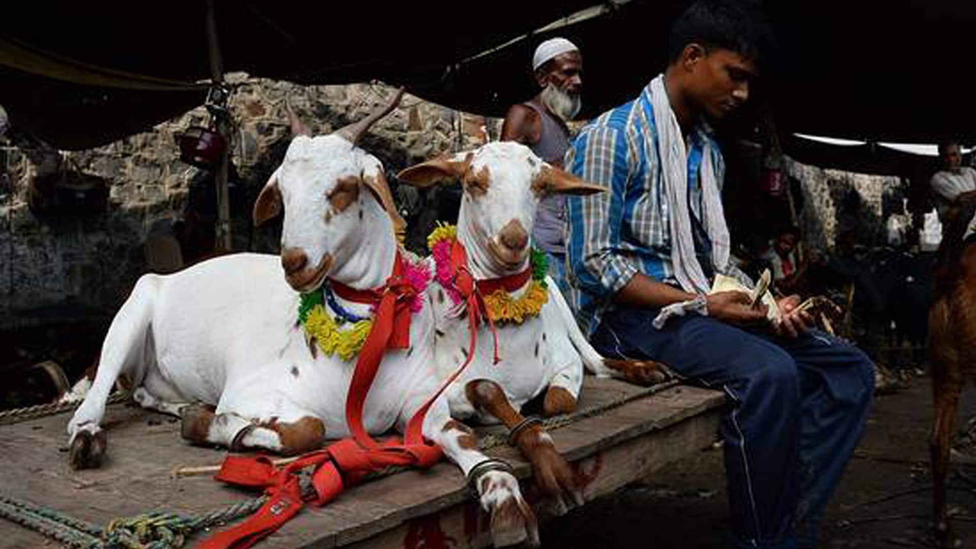 This Eid, no animal sacrifice in open in Uttar Pradesh