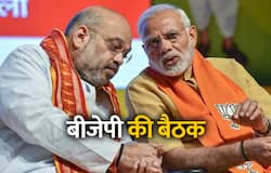 BJP National Executive in delhi