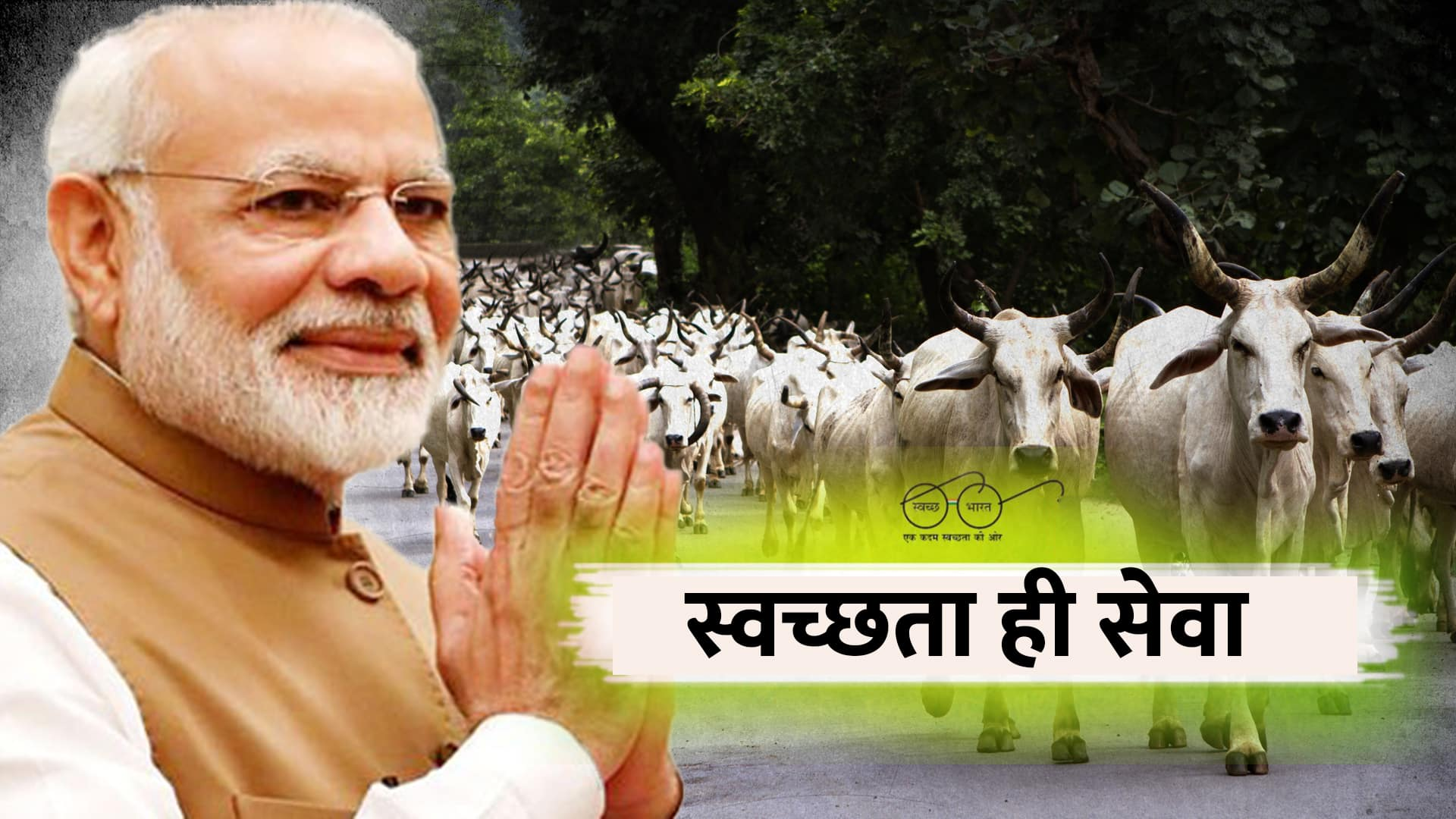 news reports suggest cow deaths due to PM Modi event is baseless