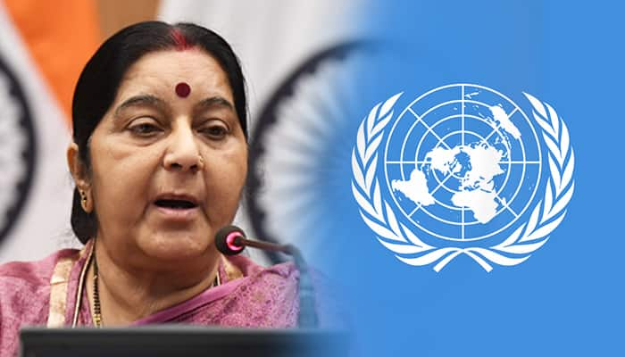 Sushma Swaraj bilateral meeting with foreign ministers to various countries