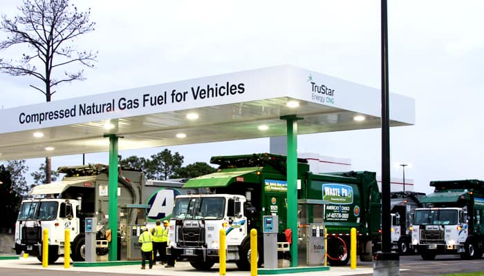 Prices of clean fuel CNG increased
