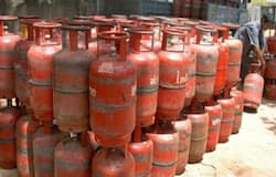 cooking gas cylinder price hike