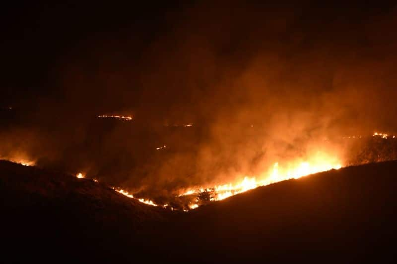 "Chief fire officer of Mumbai Prabhat Rahangdale said, ""Fire personnel are trying to put out the flames with 'beaters', or branches of trees used to create a fire break, as they have no access to fire appliances."""