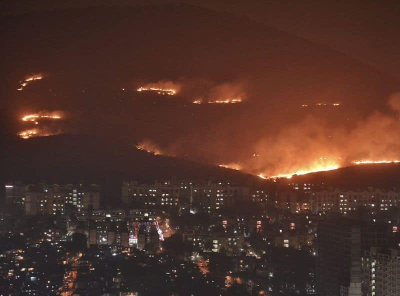 Rahangdale also said the fire started spreading towards residential areas such as New Mhada Colony near New Dindoshi Green Hill Society in Goregaon (East), but luckily, no casualty was reported.