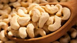 From heart health to weight loss to gorgeous hair: Incredible benefits of cashew nut