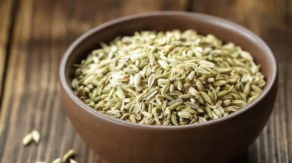 fennel seeds are helpful to resolve acidity gas and bad breath