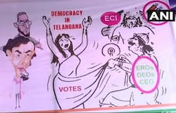 congress cartoon