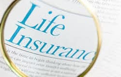 Insurance premium may be slash till 10 percent in next financial year