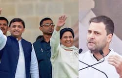 Sp-bsp alliance may announces candidate for amethi and raebareli seat against Rahul and Sonia