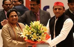 SP-BSP alliance will organise joint rally during Navratri to captivate Hindu voter in Muslim belt