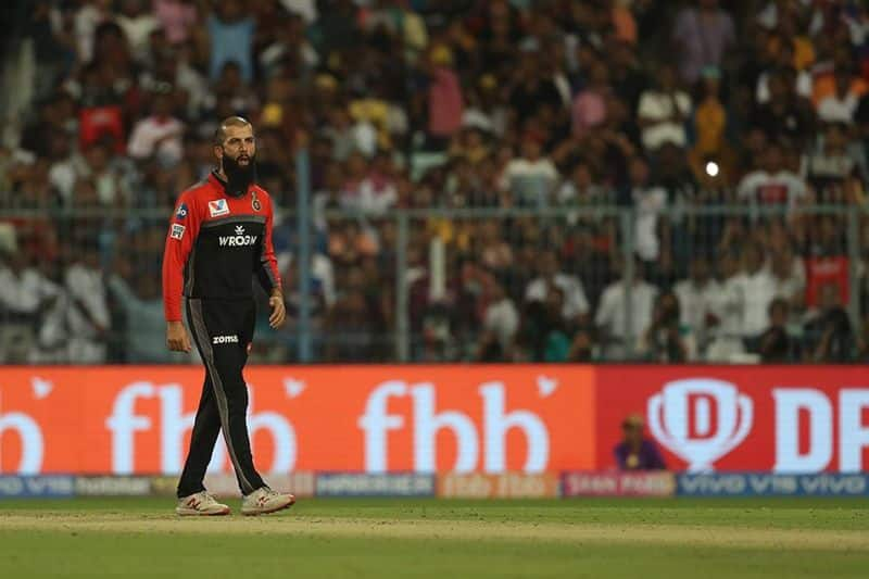 Moeen Ali's brilliant bowling in the final over restricted the Knight Riders to a final score of 203.