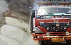 Truck loaded with paneer seized in MP