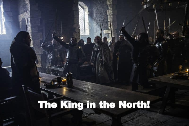 """""""The King in the North"""" – King in the North is ancient title held for thousands of years by House Stark of Winterfell. The phrase was used 88 times by the first men to encourage and grace their king."""