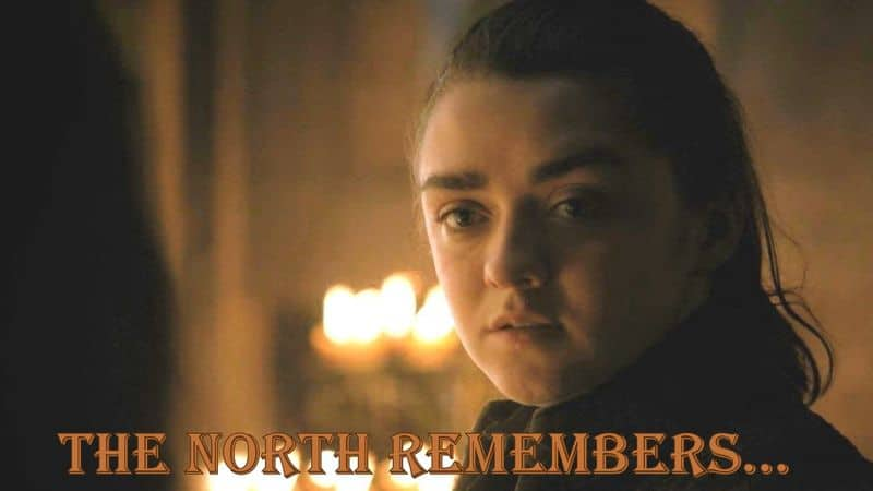 """""""The North Remembers"""" –The phrase was best used by Arya Stark in Season 7 episode 1 where she kills 45 men in one go by poisoning their wine taking the revenge for her mother's and brother's death from 'The Red Wedding'."""