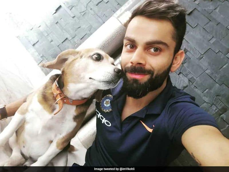 Last year, Virat was the only Indian to feature on the Forbes highest-paid athletes list. According to Forbes, Kohli earned around $20 million last year. Virat reportedly has a net worth of $24 million (Rs 160 crore). Here is a breakdown of Virat Kohli's net worth.
