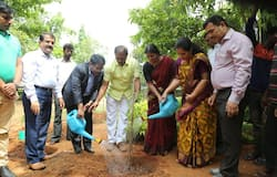 BBMP environment day
