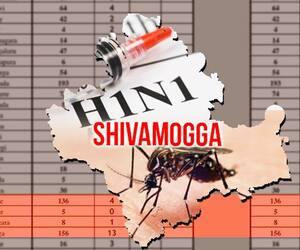 karnataka H1N1 dengue chikungunya cases on the rise in Yeddyurappas hometown