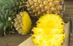 <p>pineapple</p>