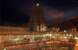 <p>Following social distancing norms, devotees queued up outside the temple to offer their prayers to the deity.</p>