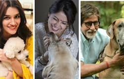 Be it Amitabh or Anushka, these stars love their belly dogs more than they know