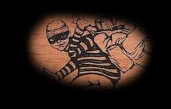 wood thief