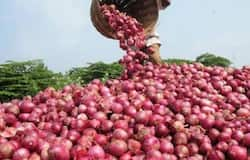Pakistan will cry after onion prices rise in India