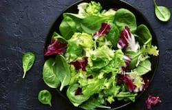 vegetarian diet general
