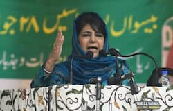mufti permit to meet her party men