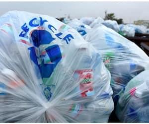 a delhi based university found plastic eating bacteria