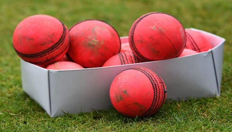 Why Pink balls are used to play Day Night Test match