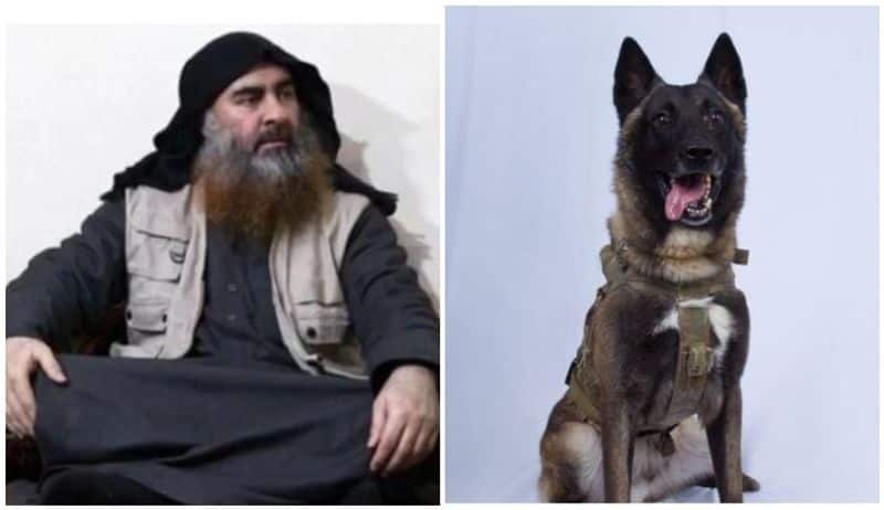 ISIS appoints new leader after death of al-Baghdadi