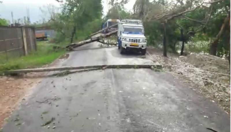 Cyclone Bulbul could not damage Sunderbans like Aila