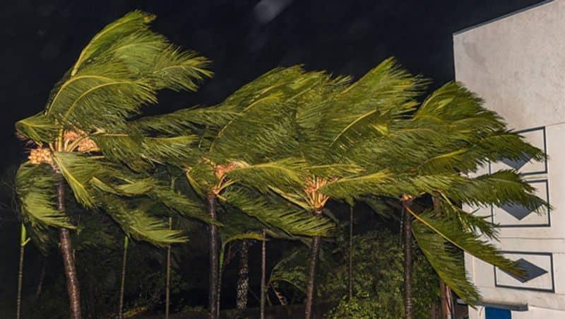 Odisha farmers big loss in Cyclone Bulbul: says Central team