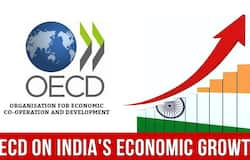 India's Economy To Grow 6.4% By 2021: OECD