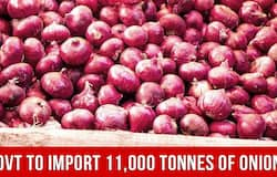 Govt To Import 11,000 Tonnes of Onions From Turkey To Control Rising Prices