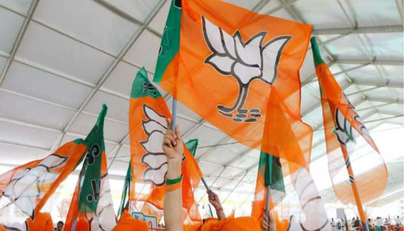 BJP MLAs in Uttar Pradesh protest against own party in Assembly
