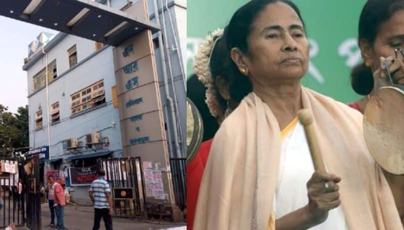 When CAA doesn't apply to Indian citizens, Mamata Banerjee says BJP snatching citizenship of legal citizens