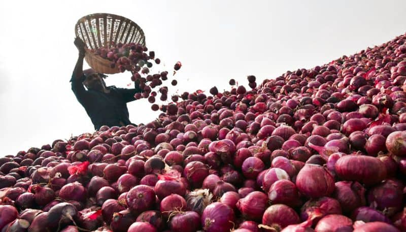 There will be no onion shortage from next year, the government has taken these steps